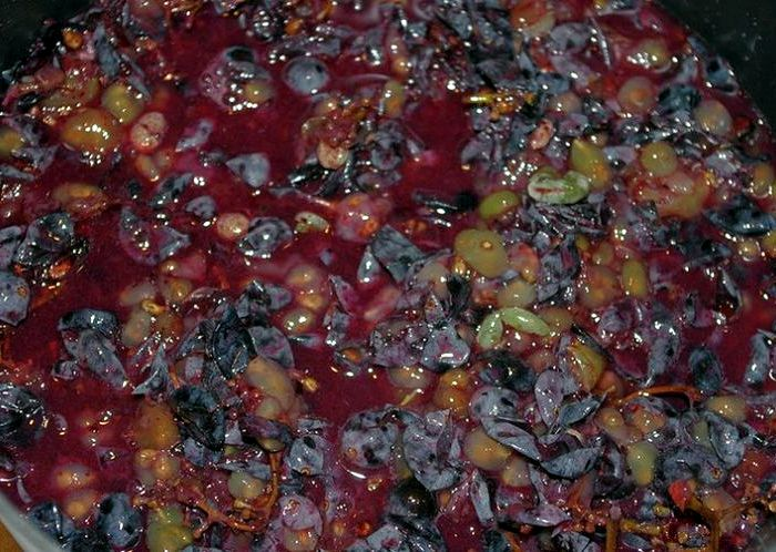 Рецепты изготовления вина в домашних условиях из красной смородины 166