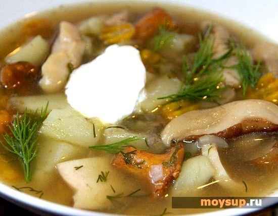 суп с белыми грибами замороженными видео