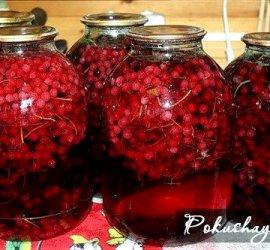 Морс из красной смородины на зиму рецепт